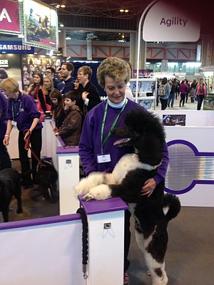 Sara & Jeeves at Crufts